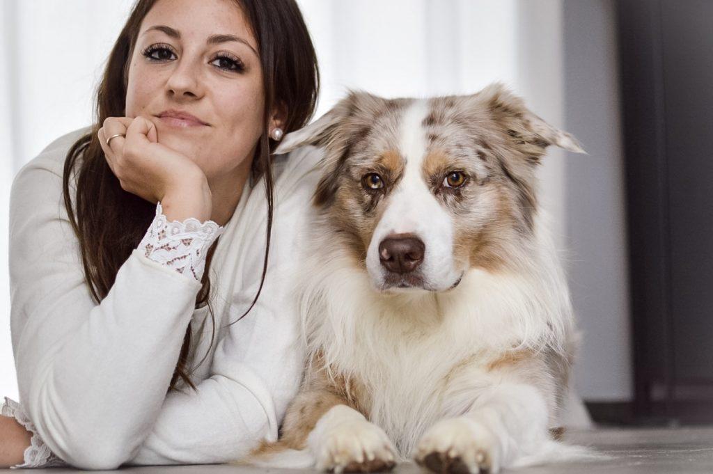Ist der Australian Shepherd als Ersthund geeignet?